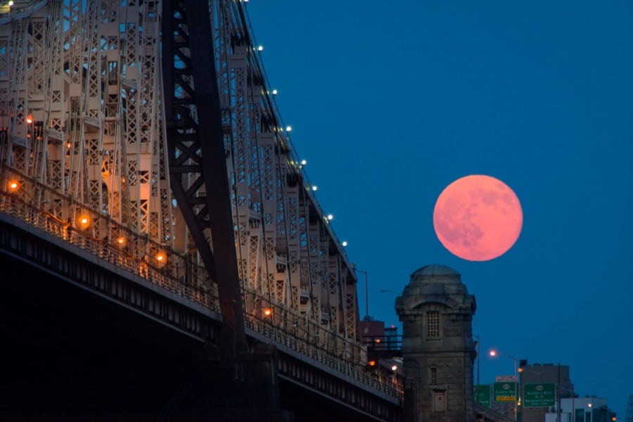 NYC-2014_0582P